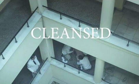 cleansed1